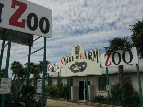 texas snake farm zoo
