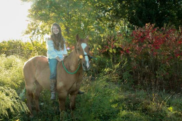 nicole slattery photography portrait horse wisconsin