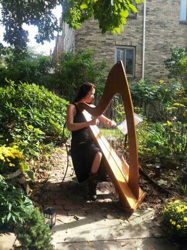pittsburgh harpist kate stapleton