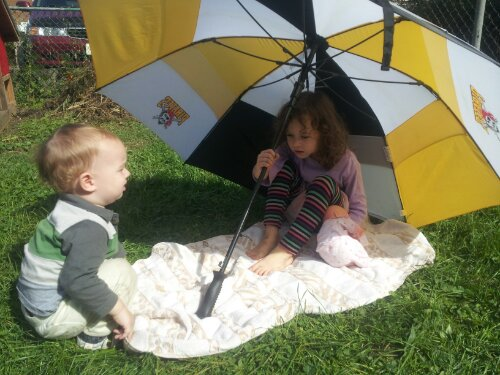 pittsburgh picnic pirate's umbrella